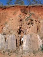 Development of lavaka erosion above and behind roadcut in laterite/saprolite