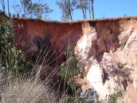 Overhanging laterite and vertical saprolite