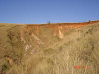 Red laterite above tan and white saprolite in vertical headwall of lightly active stage III lavaka
